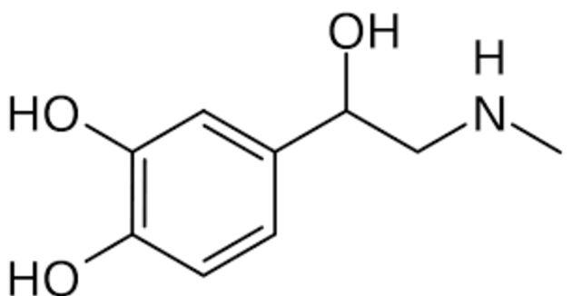 Japon kimyager Takamike ve Amerikalı fizikçi Abel adrenalin hormonunu buldu. tarihte bugün