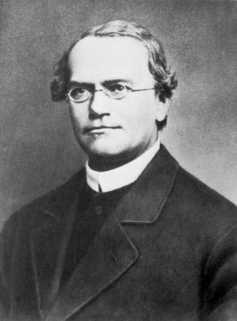 Gregor Mendel, Avusturyalı rahip aynı zamanda bilim adamıdır(ÖY-1884) tarihte bugün