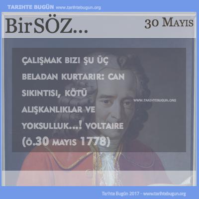 Günün Sözü Voltaire Çalışmak