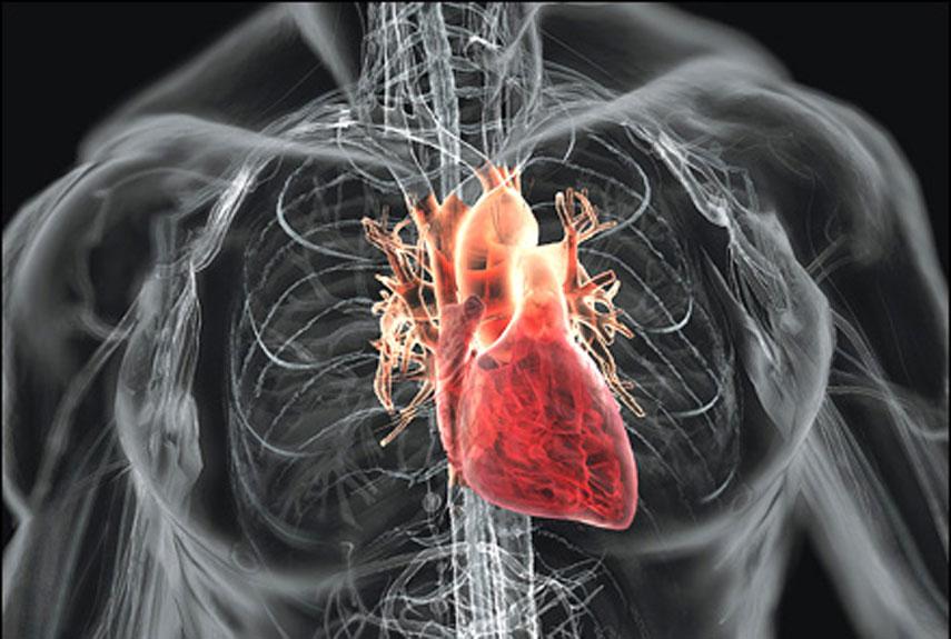 Türkiye'de ilk kalp nakli yapıldı. Doktor Kemal Beyazıt ve ekibinin gerçekleştirdiği ameliyat sonrası hasta 18 saat yaşayabildi. tarihte bugün